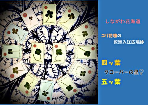 画像 しながわ花海道 鮫洲入江広場 ユリ花壇周辺情報