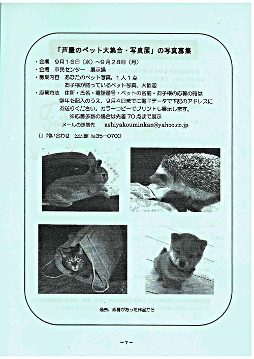 【写真募集】芦屋のペット大集合・写真展