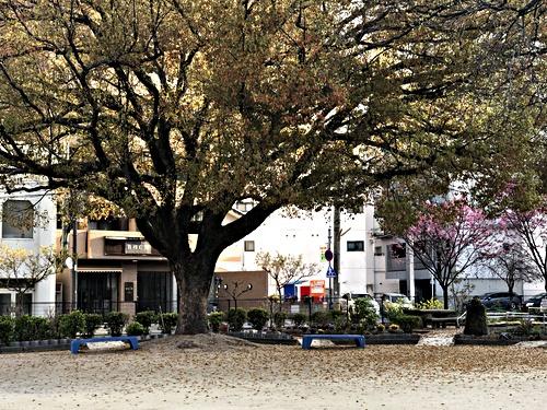 横川第二公園 四町合同清掃(広島市西区)